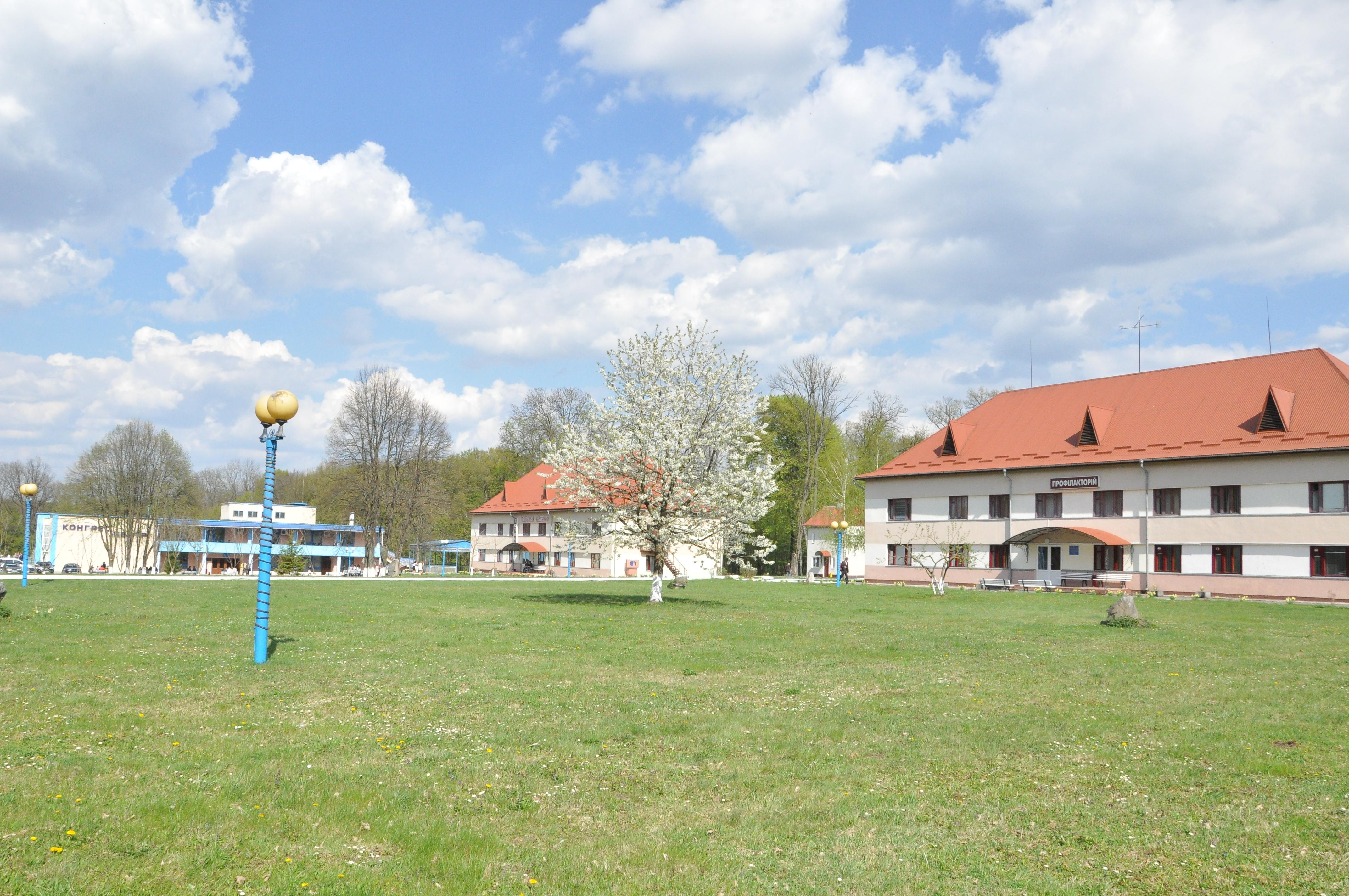 Chervona-Kalyna-15044449